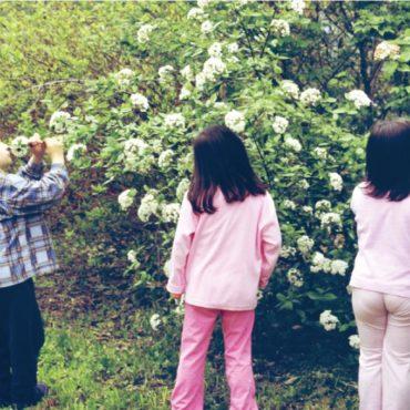Duftgarten. Wie man Rosenparfüm herstellt