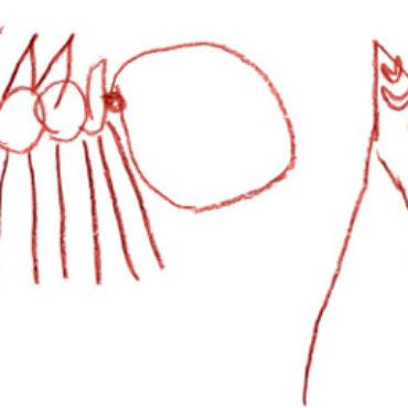 Besucher und Mitbewohner: Die Ameise