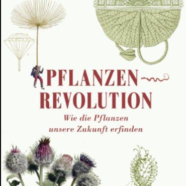Wie die Pflanzen unsere Zukunft erfinden