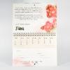 Vergessene Sorten Kalender Deatil Juni